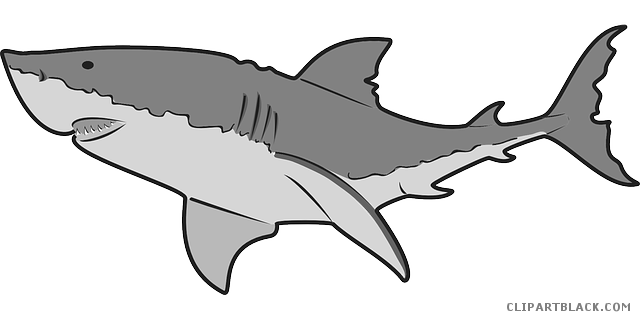clip art freeuse stock Grey Shark Clipart