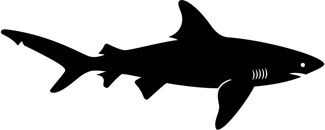 graphic black and white download Sharks clipart. Great white shark purple