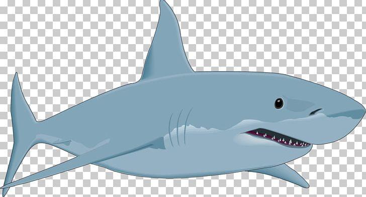jpg free stock Great white png animals. Sharks clipart bull shark