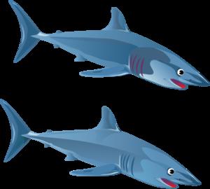 clip library download Sharks clipart bull shark. Blue clip art at