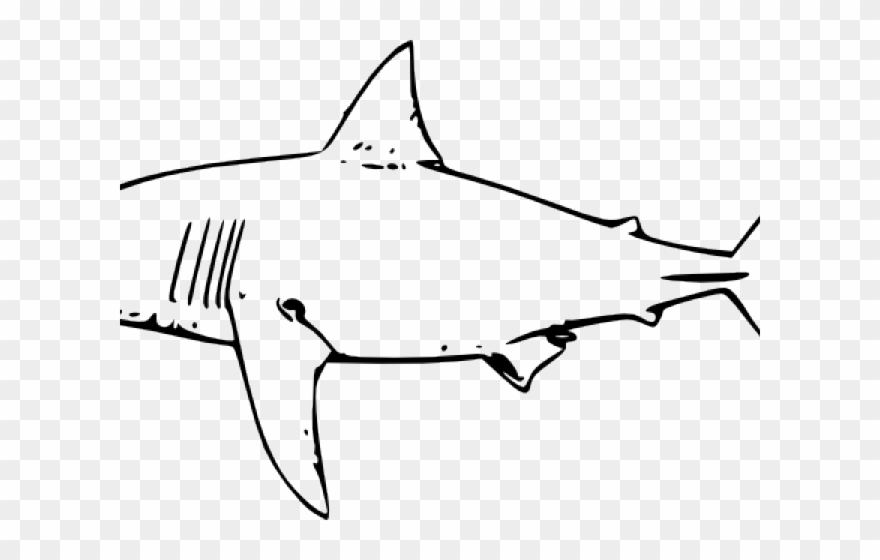vector black and white download Cool clip art png. Sharks clipart bull shark