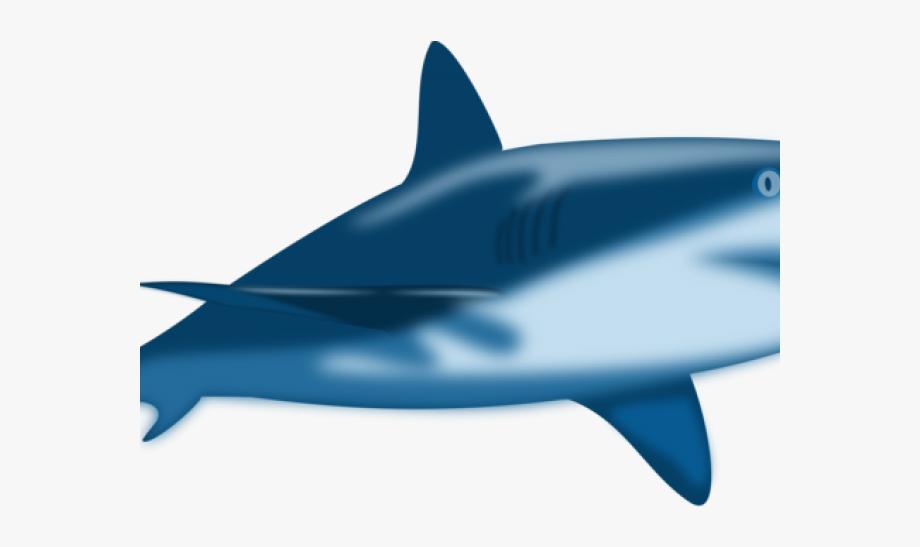 image royalty free stock Sharks clipart bull shark. Reef free