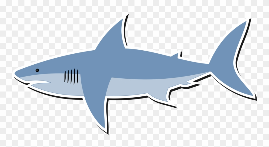 picture freeuse library Sharks clipart bull shark. Great white finning lemon