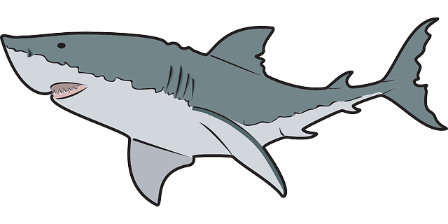 clip art library Friendly Shark Clip Art