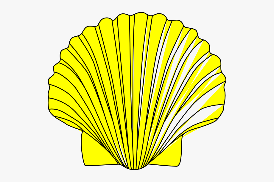 png royalty free download Shell clipart. Yellow free cliparts .