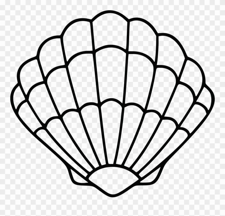 picture freeuse stock Shell clipart.  free of a.