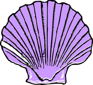 picture black and white Purple . Shell clipart.