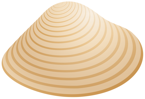 jpg black and white stock Shells clipart. Sea shell png clip