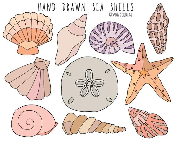 banner black and white download Sea hand drawn clip. Shells clipart
