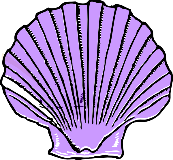 jpg library library Conch Shell Clipart at GetDrawings