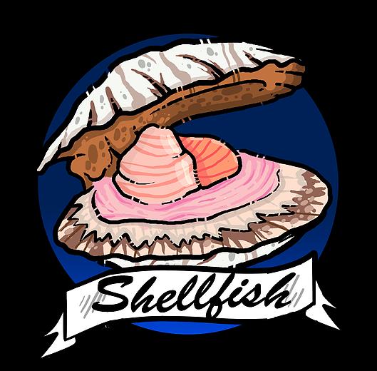 graphic download Valsop shell fish scallops. Shells clipart shellfish.