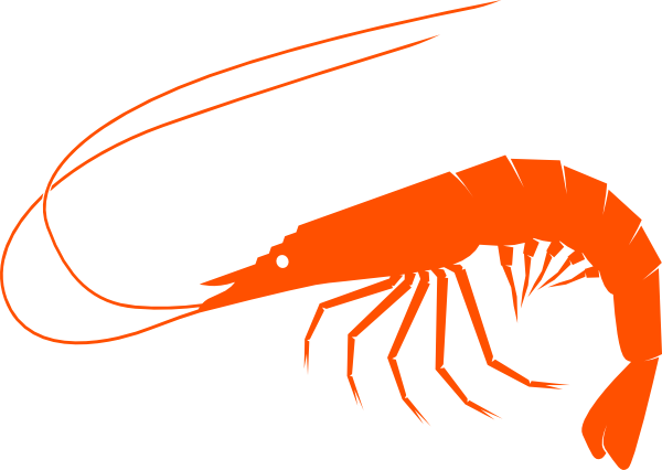 clip freeuse library Orangeshrimp clip art at. Shrimp clipart.
