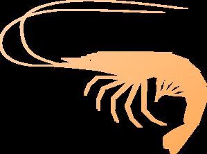 banner black and white Shrimp clipart. Clip art at clker.