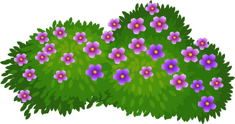 png free download Shrub drawing. Flower clip art cartoon