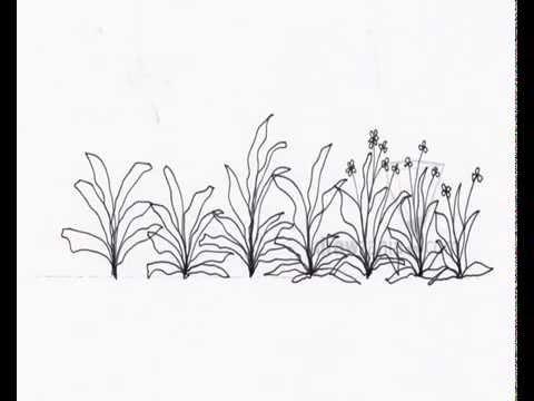 image free Shrub drawing. Landscape basic elevation
