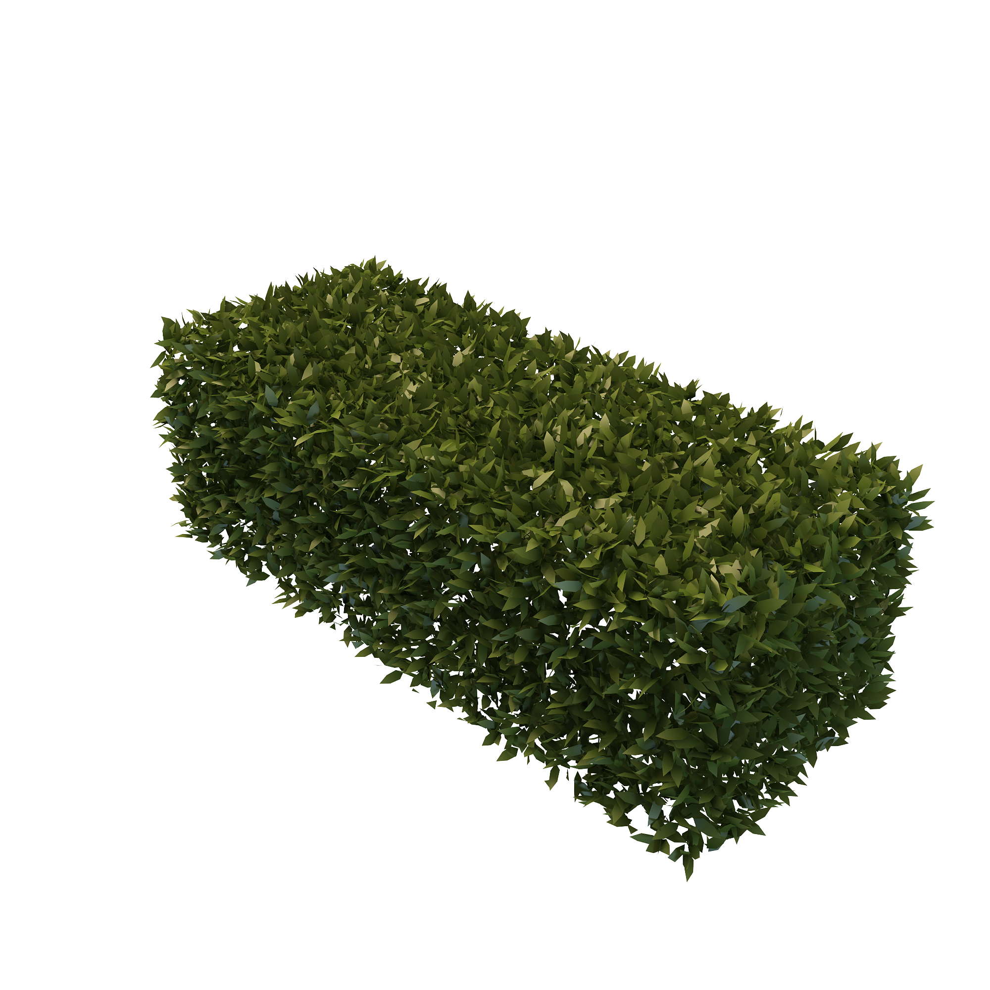 graphic free stock  hedge bush png. Vector bushes rectangle