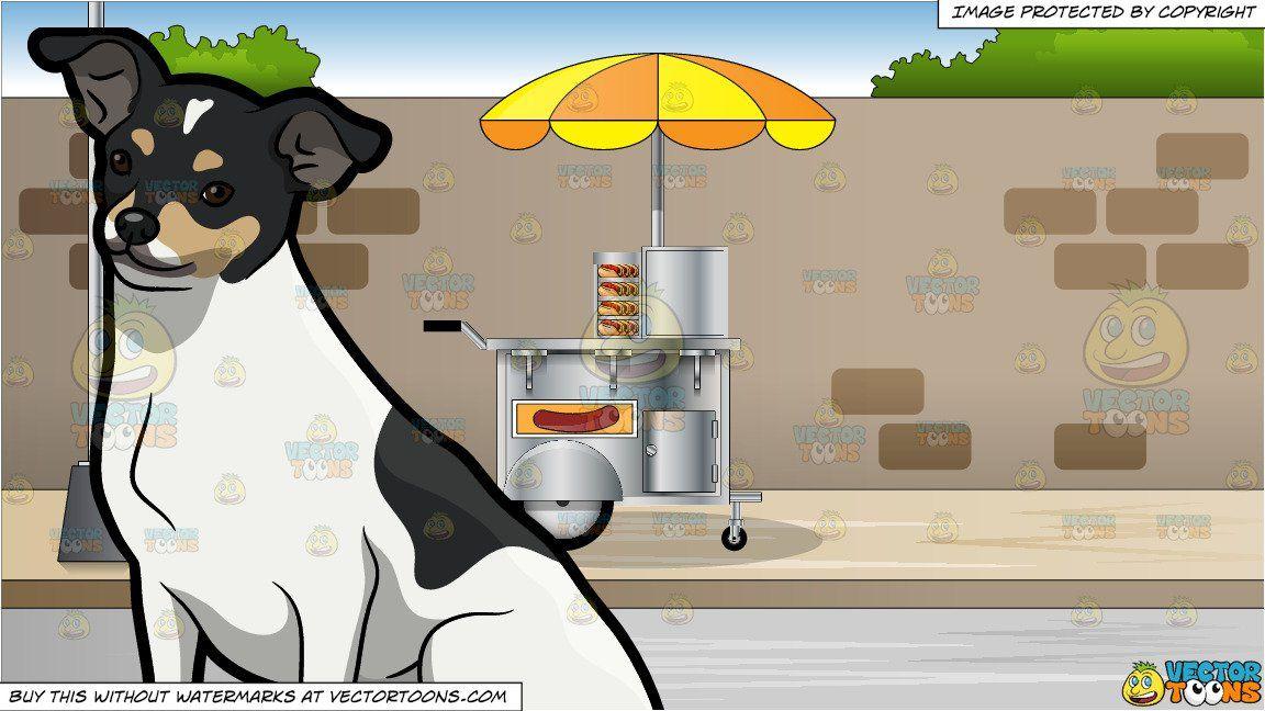 banner download A cute rat terrier. Sidewalk background clipart
