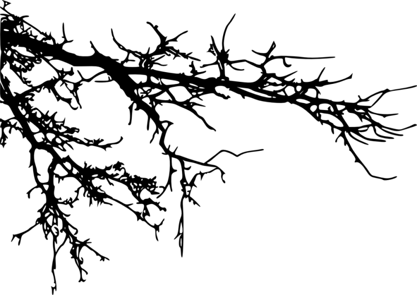 vector black and white download tree branches silhouette png