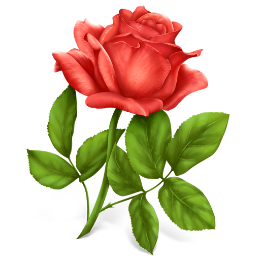 clipart royalty free stock Single rose clipart. Png transparent download images