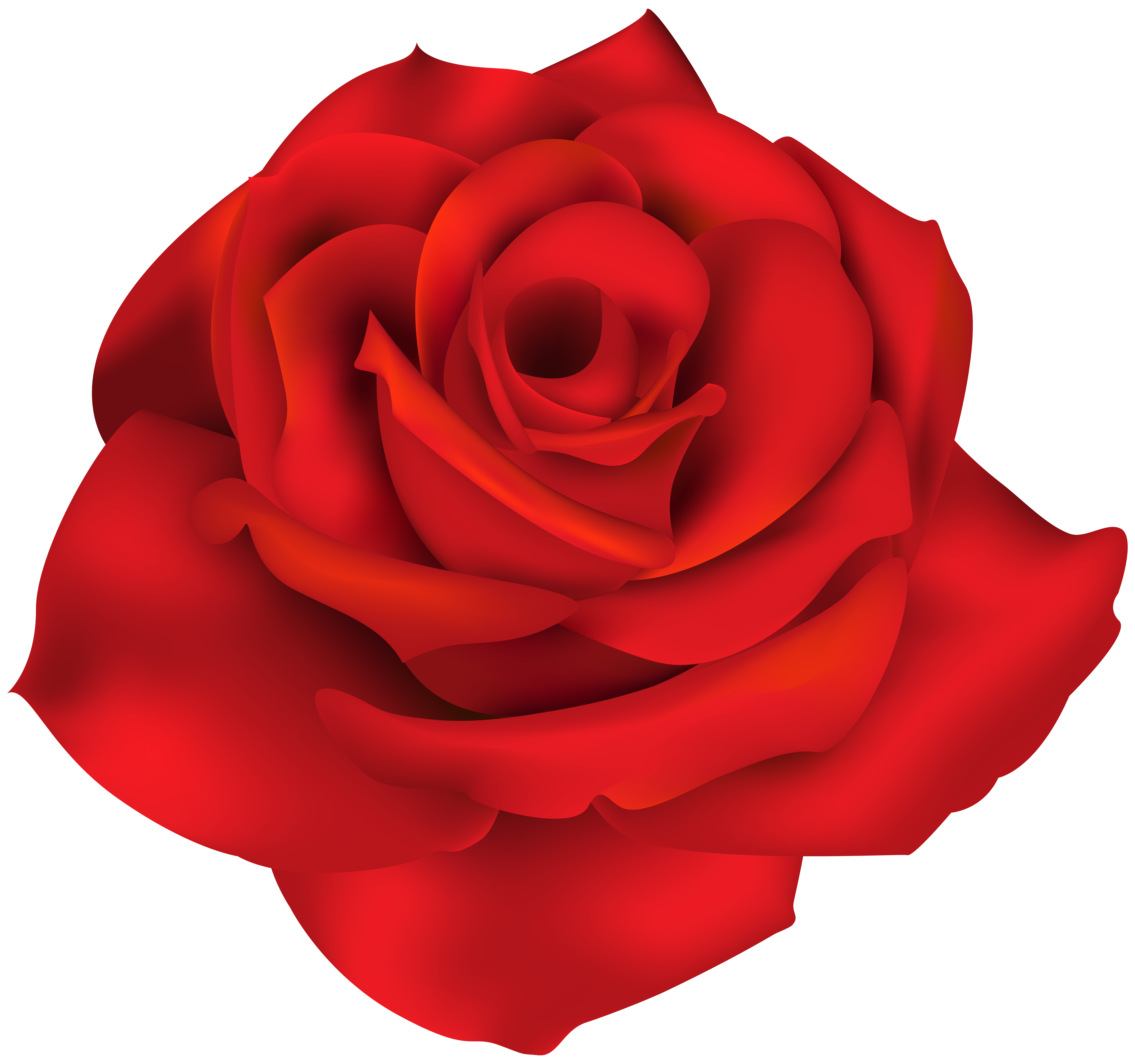 png royalty free library Single rose clipart. Red png clip art