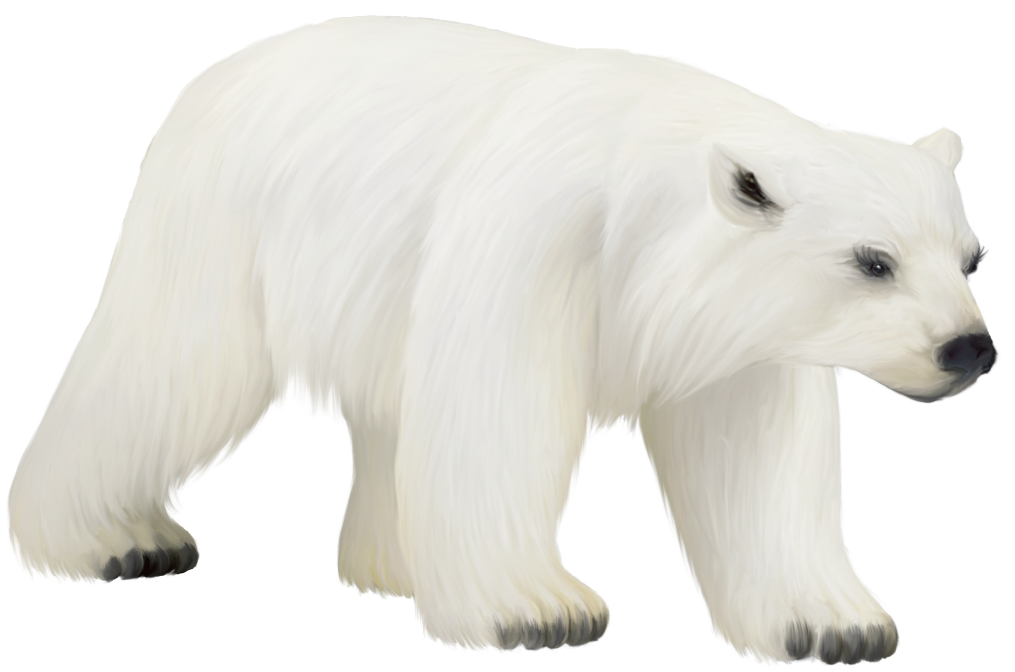 clip art royalty free stock Large painted png bears. Sitting polar bear clipart