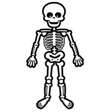 clip art free library Easy Skeleton Drawing For Kids at PaintingValley
