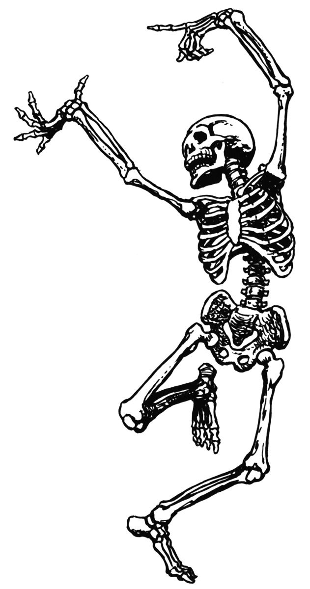jpg royalty free library Phil wade s course. Skeleton clipart black and white