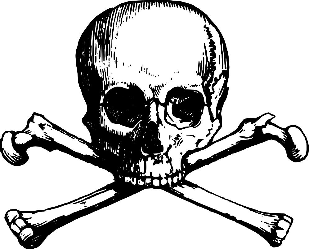 jpg royalty free library And bones crossbones clip. Valkyrie drawing skull