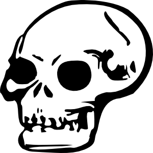 picture free download Skull clipart. Human clip art at.