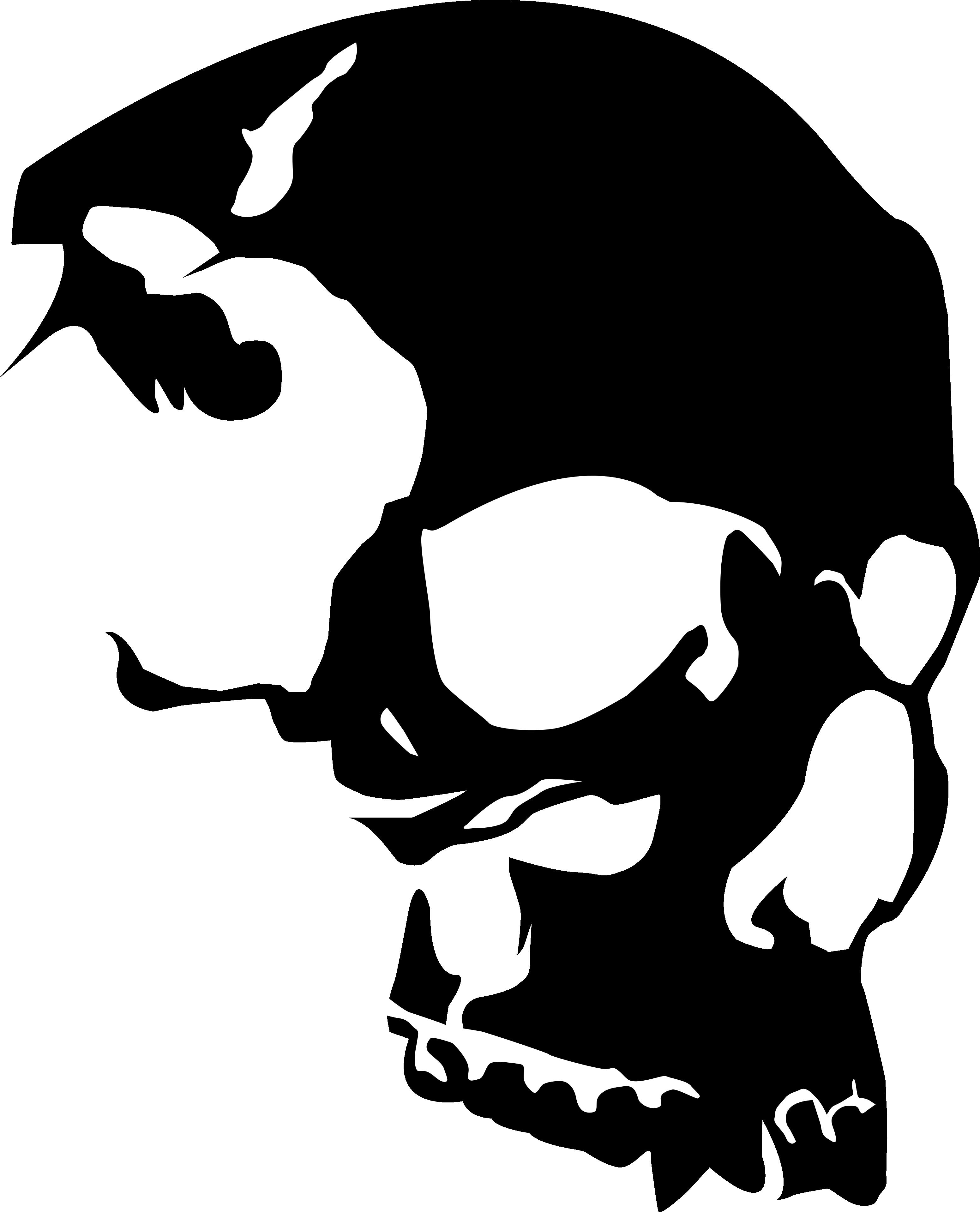 clip art download Vector emblem skull. Clipart best pirates pinterest