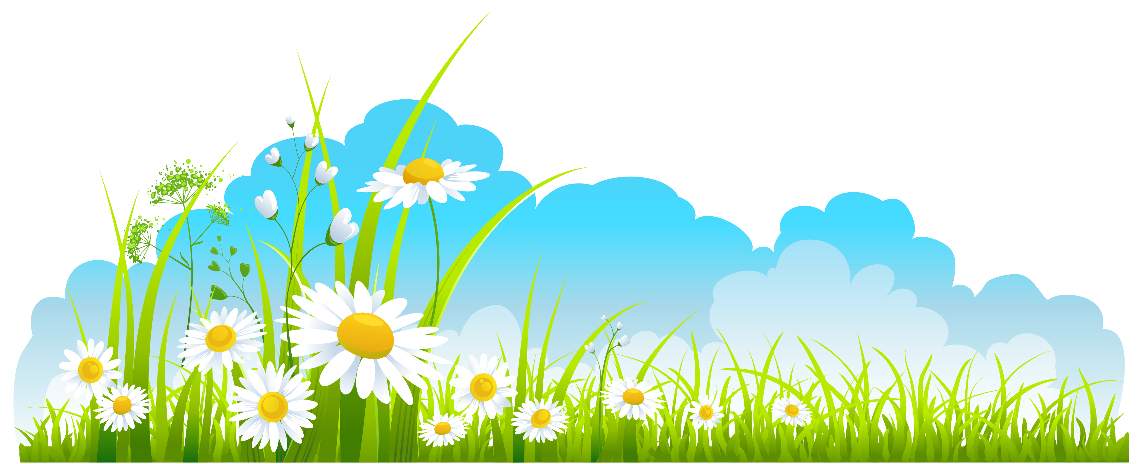 clipart transparent stock Spring Decor Sky Grass and Camomile PNG Clipart