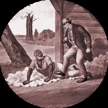 free download Slavery
