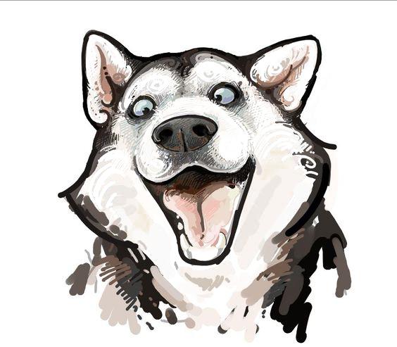 freeuse library Siberian Husky Alaskan Malamute Chow Chow Puppy Drawing