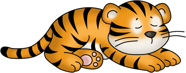 picture transparent Sleeping Tiger