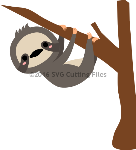 image library stock Sloth in Tree