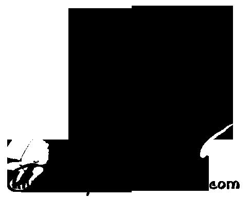 banner transparent library Sketch