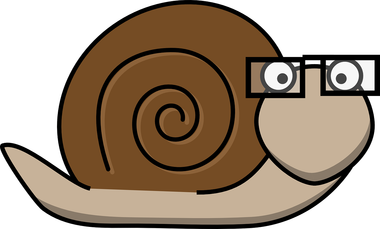 graphic library download Snail Glasses Bald Intelligent PNG Image