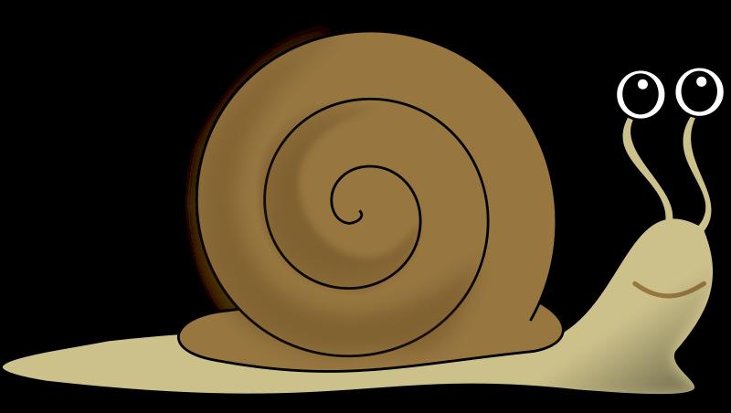 clipart black and white download Snail clipart comic. Escargot decroissance png all