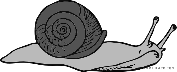 jpg Snail Animal free black white clipart images clipartblack