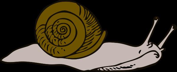 image free stock snail clipart sad #83436443