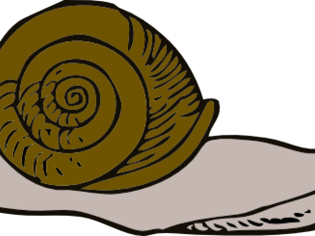 banner Slow free on dumielauxepices. Snail clipart sluggish