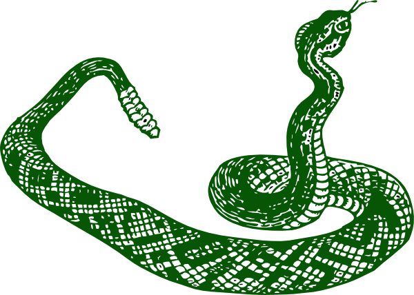 svg stock Dark Green Snake Clip Art at Clker