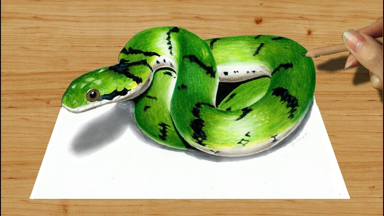 banner black and white stock Drawing snake colour.  d colored pencil