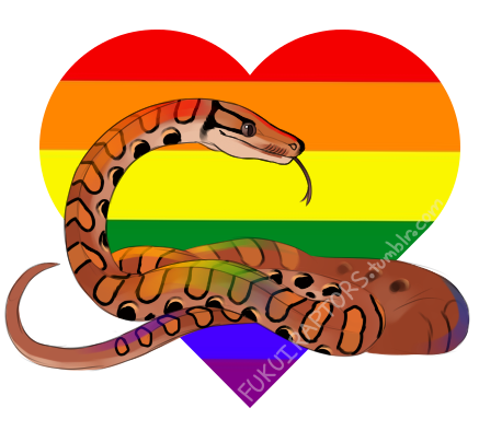 picture library download rainbow boa art