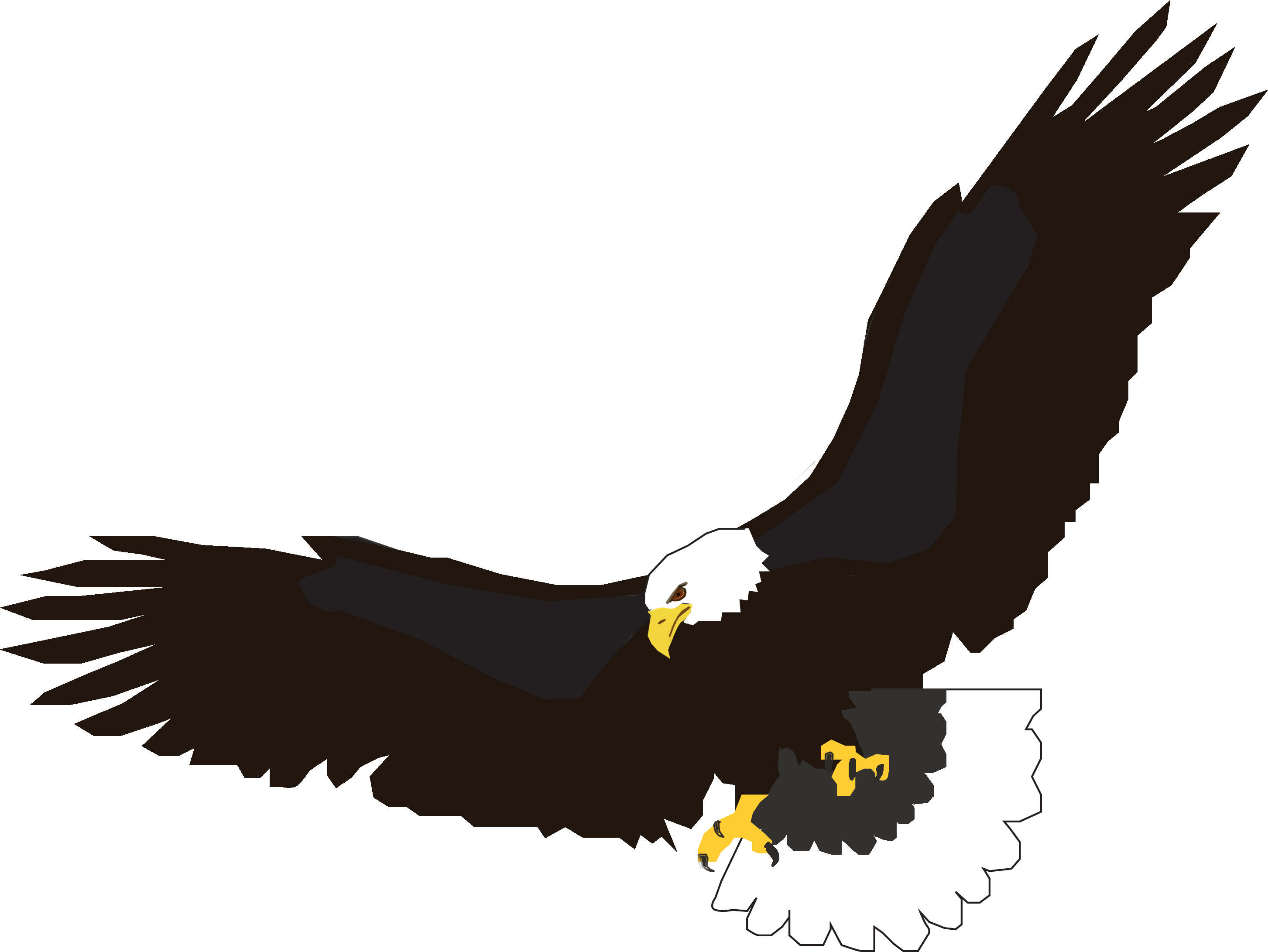 png library stock Soaring Bird Silhouette at GetDrawings