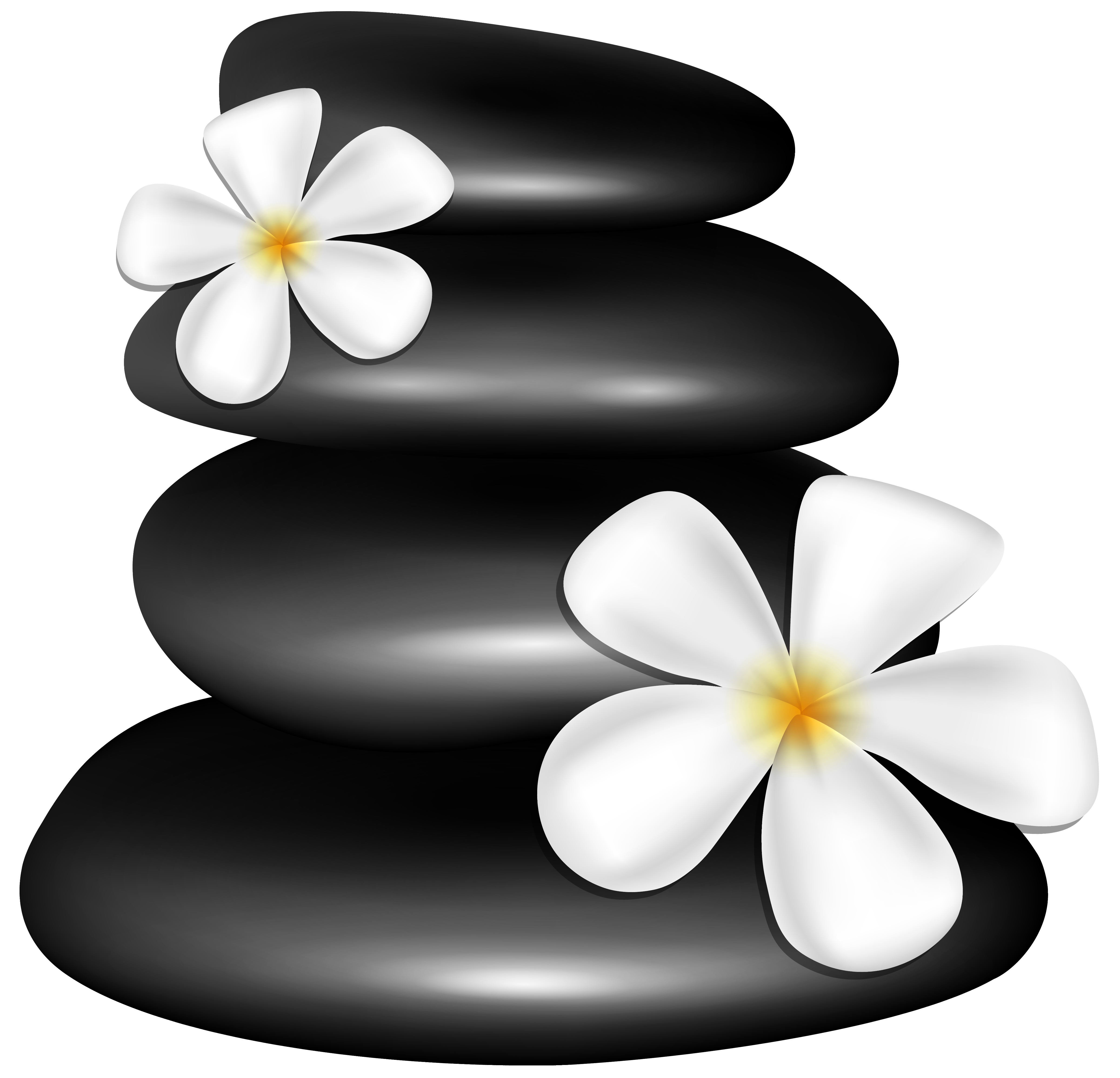 clip art free stock Stones with white png. Spa flowers clipart