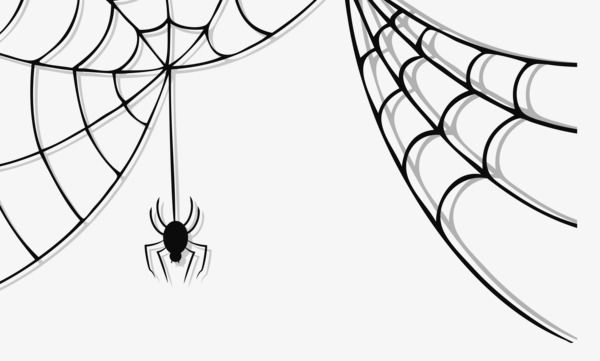 vector stock Cobweb png . Spider on web clipart