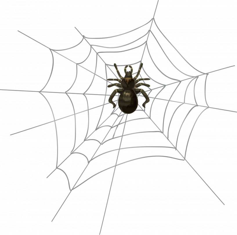 picture Spider web clipart transparent. Halloween png high jokingart