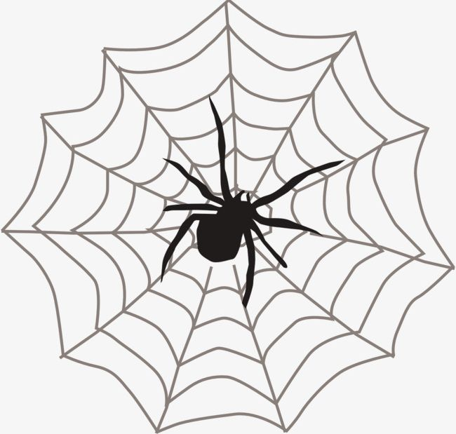 vector black and white stock Spider web with spider clipart. Png animal cobweb crawl