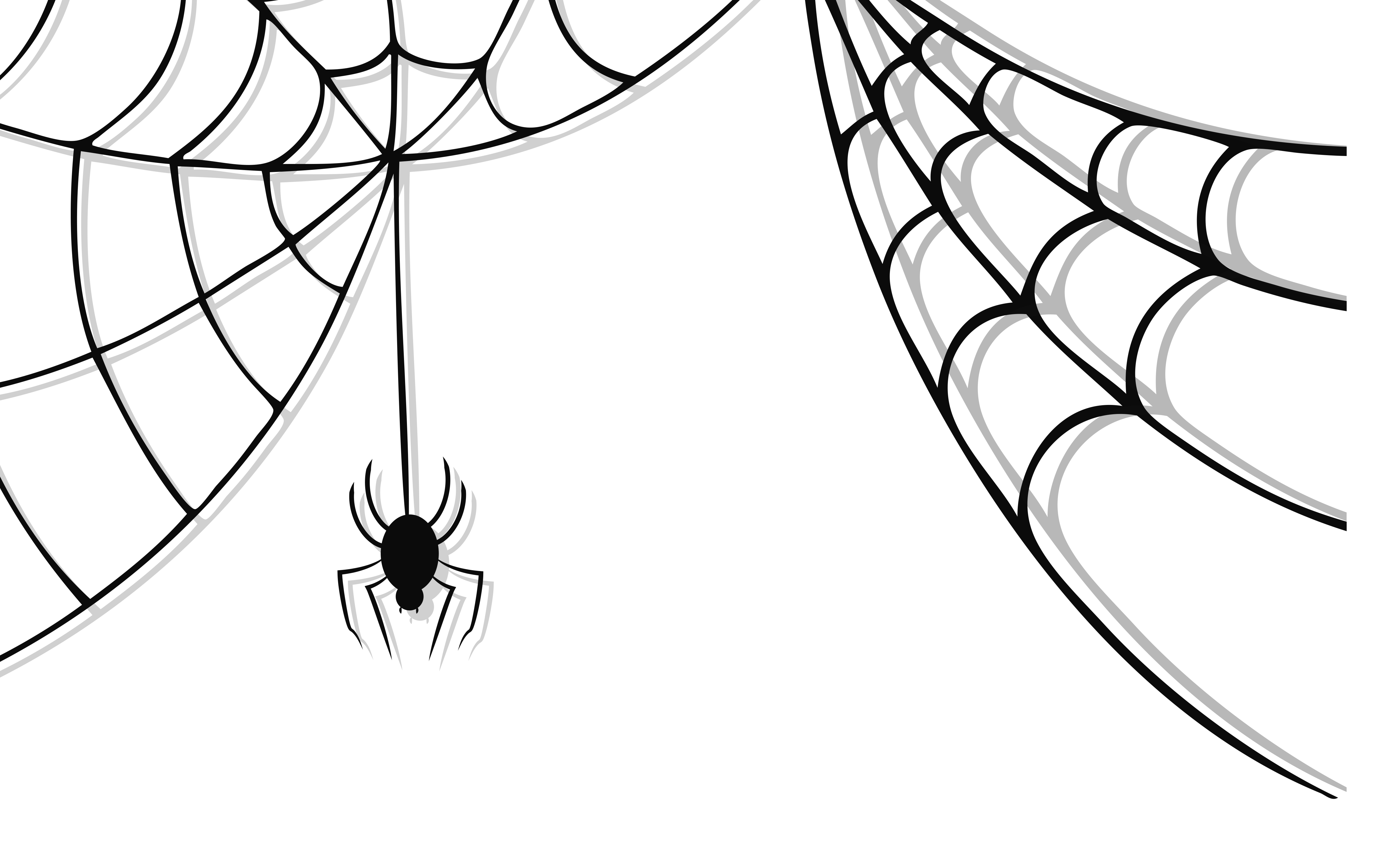 free stock Unique of letters format. Spider web with spider clipart